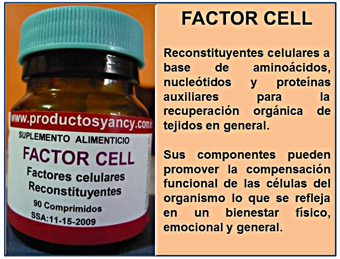 Factor Cell